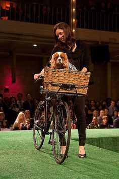 Canine for Independence - Haute Dog Fashion Show
