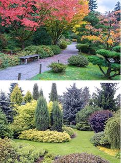 Plan for trees early in your landscape design (images via dplett and ronstik / Adobe Stock) | 10 Secrets to Successful Landscape Design | If you are planning to update your landscape design, this list of ideas will help to make sure your garden turns out to be a success.