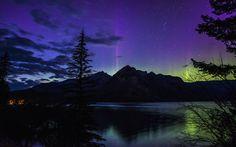 beautiful night banff national park alberta canada night forest ...