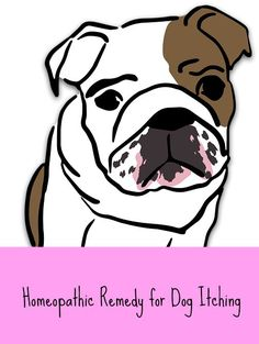Homeopathic remedy for dog itching.