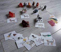 Kreatywne nauczanie: Ciekawe karty ze zwierzętami
