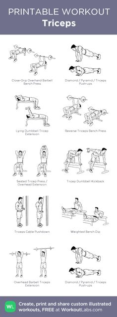 Triceps: my visual workout created at WorkoutLabs.com • Click through to customize and download as a FREE PDF! #customworkout Tricep Dumbell Workout, Chest And Tricep Workout, Tricep Dips, Chest Workouts, Gym Workouts, Thursday Workout, Cable Row, Muscle Fitness, Mens Fitness