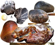 June 2015 stop #2: Gold Beach Oregon Agate Hunting | Treasures found by 4 beachcombers