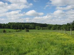 How I picture the farmland around the Lonnigan homestead in Asheville, NC Asheville Nc, Homesteading, North Carolina, Pictures, Outdoor, Photos, Outdoors, The Great Outdoors, Drawings