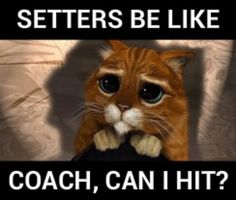 Please? Like give us a break for like 2 games! Most of the setters are team captains!