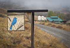 A Visit To Bluebird Grain Farms: Let the Holiday Baking Begin! - From The Tangled Nest Blog