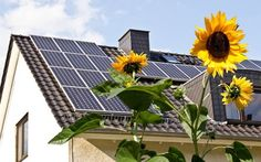 pannelli fotovoltaici google