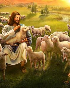 Christians all know the Lord Jesus' parable of the lost sheep. Bible Verse Painting, Jesus Painting, Jesus Is Risen, Jesus Is Lord, Christ The Good Shepherd, Bible Photos, Jesus Photo, The Lost Sheep, Pictures Of Jesus Christ