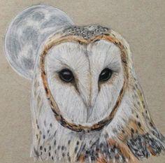 Owl artwork by Tiffany Mootrey Barn Owl drawing Barn Owl Pictures, Owl Who, Owl Artwork, Archaeology, Tiffany, Bird, Drawings, Owls, Digital Art
