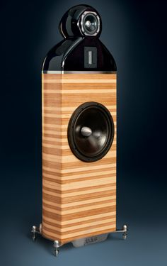 Gladius Speaker The need for a relatively sensitive conventional floor stander, lead us to the design of a not-so-conventional speaker. The Gladius speaker is born. Using the best possible drivers for the bandwidth intended to operate, and keeping the overall cabinet volume as down to earth
