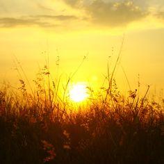 'Sunset' on Picfair.com