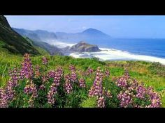 Message from Gaia: Beautiful, Unique You - July 20, 2015 - YouTube