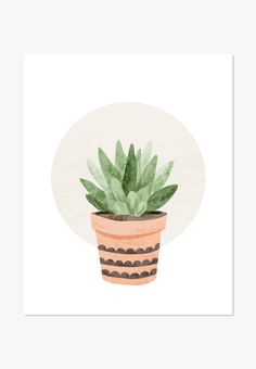 Original watercolor illustration of a small succulent plant. A unique gift for…