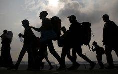 De acuerdo a un comunicado reciente de la ONU, en el año 2017 han aumentados las muertes de migrantes en su intento de cruzar la frontera entre México #OIM #ONU #DDHH #Migrantes #Frontera