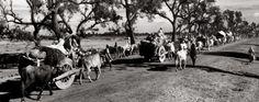 1947-ਉਜੜ ਕੇ ਵੱਸਣ ਦੀ ਗਾਥਾ- ਸਰਦਾਰ ਇੰਦਰਜੀਤ ਸਿੰਘ ਵੜੈਚ ਜੀ ਜੁਬਾਨੀ Read Full/Listen Now at:- http://qaumiawaaz.com.au/wp/?p=2148 by: Qaumi Awaaz Radio   