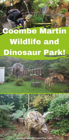 Coombe Martin Wildlife and Dinosaur Park is the perfect family day out in North Devon! Spot dinosaurs hiding in the forest, take the Dino Express to the waterfall and listen to a number of animal talks and shows.