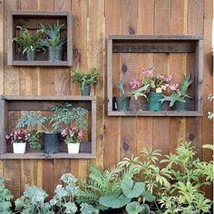 I wish I had a green thumb to be able to do this! <3