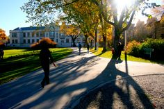 Most Beautiful University Campuses In Canada
