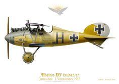BBA: Albatros D.V, Jastaschule 1, Valenciennes, 1917. There were at least 2 German flight schools based near Valenciennes, in the Great War. Il y avait au moins 2 écoles de pilotage allemands basés près de Valenciennes, dans la Grande Guerre.