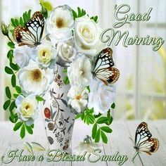 Good Morning sister and all,have a happy Sunday God bless,xxx take care and keep safe,❤❤❤☀