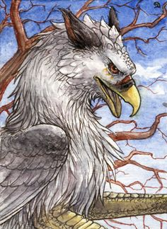 ACEO for Illumielle by Dragarta Traditional Art / Drawings / Fantasy My part of ACEO trade with *Illumielle, her heaven gryphon character Illu. This was my first drawn gryphon and I must say it was super fun! Beatiful creatures. Aquarelle and brown inks.  on DeviantArt