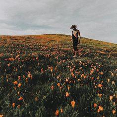 serenity #Regram via @tyfrench