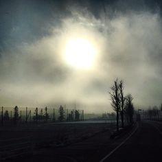 "@fivestar77777's photo: ""今朝は霧が凍って雪みたいなるダイヤモンドダスト⁈だよ〜(u_u) #朝陽#霧#氷点下"""