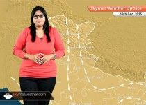 Weather Forecast for December With cold northwesterly winds blowing over the region, cold wave conditions will return over Punjab, Haryana, Delhi, North Rajasthan and parts of Madhya Pradesh on Saturday. Weather News, Weather Forecast, North India, Madhya Pradesh, Weather Conditions, December, Waves, Graphic Sweatshirt, Cold