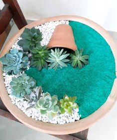 Deco trend small colorful diy succulent flower garden pot in a pot the best ideas for creating stunning summer flower pots 24 ~ litledress Succulent Gardening, Succulent Terrarium, Planting Succulents, Container Gardening, Planting Flowers, Potted Flowers, Greenhouse Gardening, Flower Gardening, Indoor Gardening