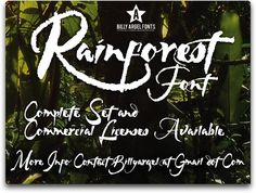 RAINFOREST font by Billy Argel - FontSpace