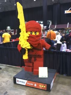 Red Ninjago Ninja  that over there <«< is the that description... excuse you. That is Kai, Elemental Ninja of fire. Not Red Ninjago Ninja. Get your facts straight, peasant!