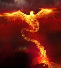 The Phoenix and Fire are so relevant to Monster Pills. Do you think the Phoenix really existed? Phoenix Rising, Dark Phoenix, Phoenix Arizona, Magical Creatures, Fantasy Creatures, Fairytale Creatures, Fire Painting, Concept Art World, Photo D Art