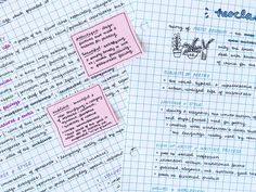 studyrose:  close-up of my english notes!