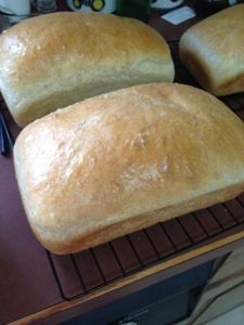 Homemade Bread  - I'm craving a sandwich looking at this bread!