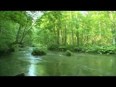 Richard Clayderman - Love Story - YouTube