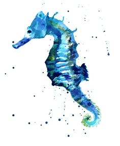 35 Best Seahorses To Draw Images Seahorse Drawing