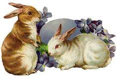 Bunnies and violets:    http://lilac-n-lavender.blogspot.com/2012/04/vintage-facebook-timeline.html