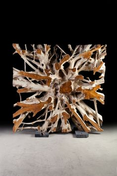 Amazing Root Sculptures. All one of a kind and at www.phillipscollection.com