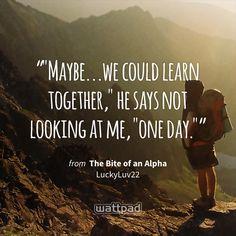 """""Maybe...we could learn together,"" he says not looking at me, ""one day."""" - from The Bite of an Alpha (on Wattpad) https://www.wattpad.com/128476394?utm_source=ios&utm_medium=pinterest&utm_content=share_quote&%26wp_page=quote&wp_uname=angelyaj&wp_originator=LZ7E5N5TcgLcxg4KmG2AKMMCmzO316Lt18VbJ1JsEV9%2FA%2FMI%2BbxpWQ2PDajv717UQ4zAxz0%2Bs1xufjAzT4F%2BV41PDCYWe%2FGQjAVMX5tEI%2F3RkXRj1cqtzqVgcO3paDTL #quote #wattpad"