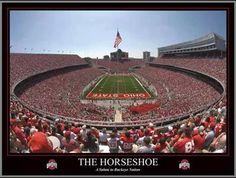 The Horseshoe OSU