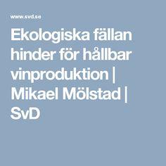 Ekologiska fällan hinder för hållbar vinproduktion | Mikael Mölstad | SvD