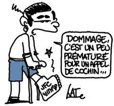Fillon blessé http://undessinparjour.wordpress.com/2012/07/30/on-ne-se-refait-pas/