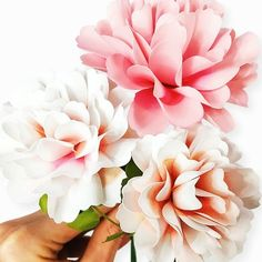 Carnation Paper Flower Templates - Catching Colorlfies