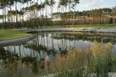 """booming """"industry"""" in Slovakia :-))) :cheers: Golf resort BLACK RIVER Bratislava - Bernolakovo - toughest golf course in Europe Golf and Country Club. Bratislava, Vineyard, Golf Courses, Europe, River, History, Outdoor, Outdoors, History Books"""