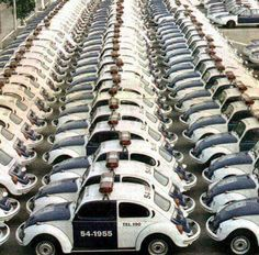 Car 54, where are you?? VW Beetle Police Car line up