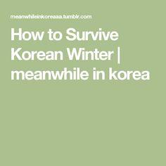 How to Survive Korean Winter   meanwhile in korea