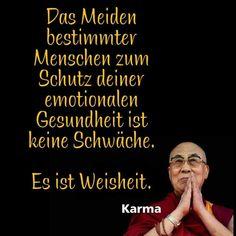 Beautiful Mind, Dalai Lama, Wise Quotes, Feel Good, Einstein, Real Life, Coaching, Poems, Lyrics