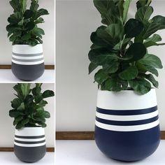Concrete Planter Boxes, Concrete Pots, Decorative Planters, Diy Planters, House Plants Decor, Plant Decor, Indoor Flower Pots, Painted Plant Pots, Clay Pot Crafts