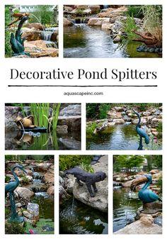 Bermuda Juniper Pond Fairy Bronze