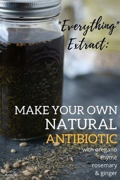 Everything Extract: Make Your Own Natural Antibiotic | The Family That Heals Together